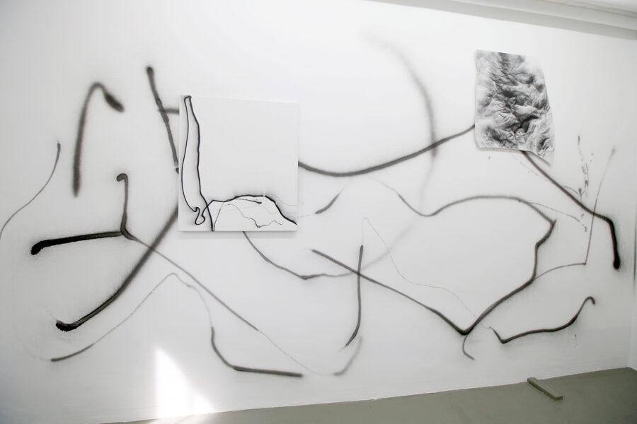 A 28820, 2020 Acryl auf Leinwand und Wand, 250 x 450 cm